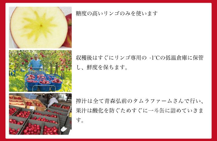 リンゴのスパークリング シードル